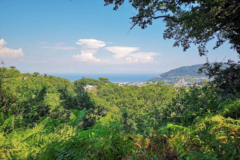 Casamicciola Therme umgeben von Grün