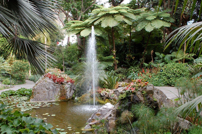 Pflanzenvielfalt im Mortella Garten auf Ischia