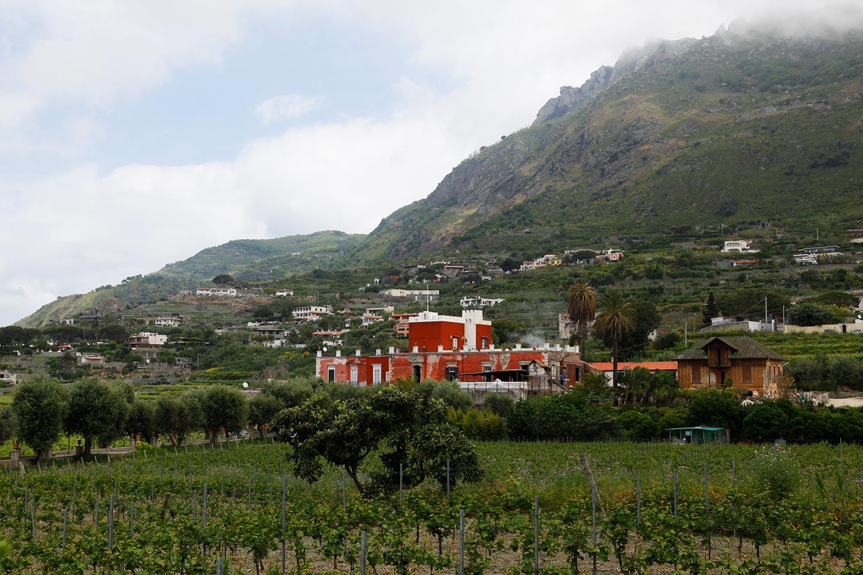 Villa Piromallo - Tenuta Calitto