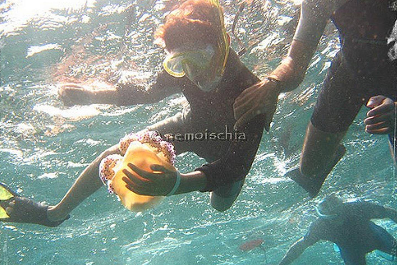 Schnorcheln mit Nemo